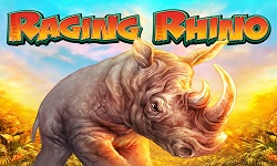 rrhino