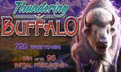 t buffalo