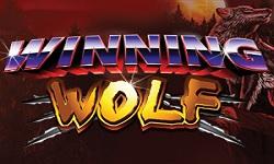 w wolf