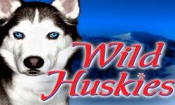 whuskies