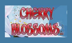 c blossoms