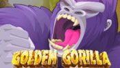 g gorilla 1