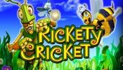 r cricket