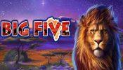b five