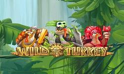 w turkey 1