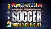 Sensible Soccer Euro Cup