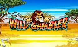Wild Gambler 1