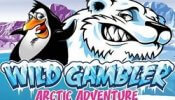 Wild Gambler Artic Adventure