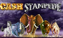 Cash Stampede 2