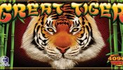 great tiger everi