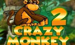 crazy monkey 2 logo