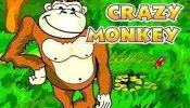 crazy monkey logo